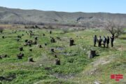 Xarici diplomatlar Qubadlıda Ermənistanın törətdiyi ekoloji terroru öz gözləri ilə görüblər - FOTO